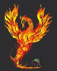 phoenix rising image